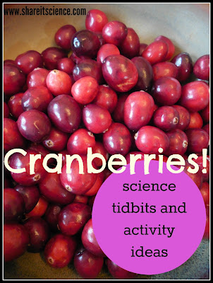 cranberries science and activities