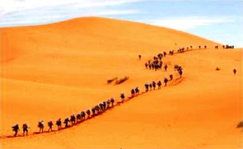 Por que os israelitas levaram 40 anos para atravessar o deserto do Sinai se este só tem 200km de largura?