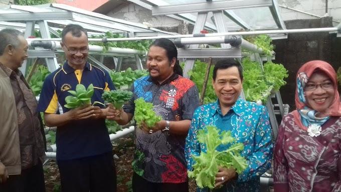 PNJ dan Warga Depok Panen Sayuran Hidroponik