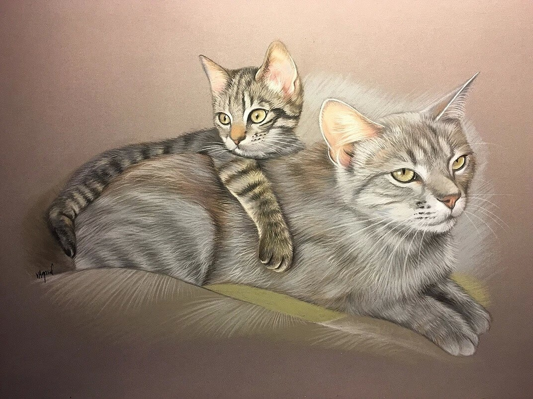 12-Tiger-Cats-Virginie-Agniel-Pastel-Drawings-of-Cats-and-Dogs-www-designstack-co