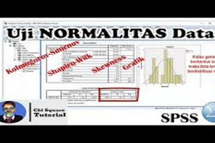 Cara Cepat Uji Normalitas Menggunakan SPSS