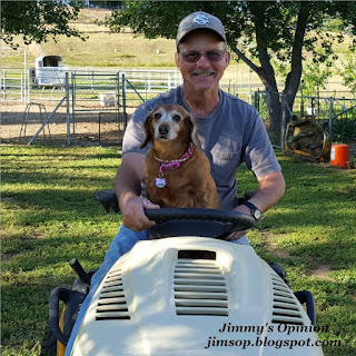 Jimmy driving a Cub Cadet garden tractor with his Daschund named Dixie riding on his lap