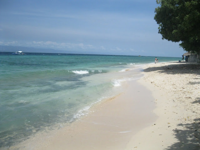 Nofiltertravel :The Philippines Has the Best Beaches in the world MoalBoal