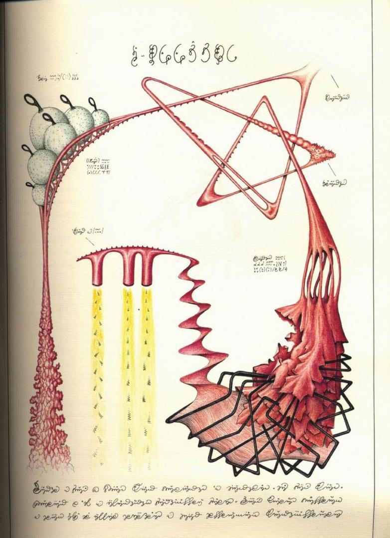 transparent abelard jeff gburek: Codex Seraphinianus