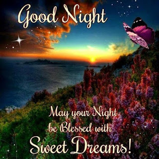 Good Night And Sweet Dream with quotes Image