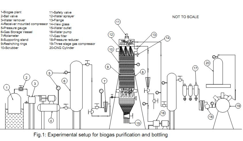 BIOGAS PURIFICATION USING WATER SCRUBBING SYSTEMS
