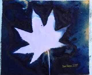 Wet cyanotype_Sue Reno_Image 217