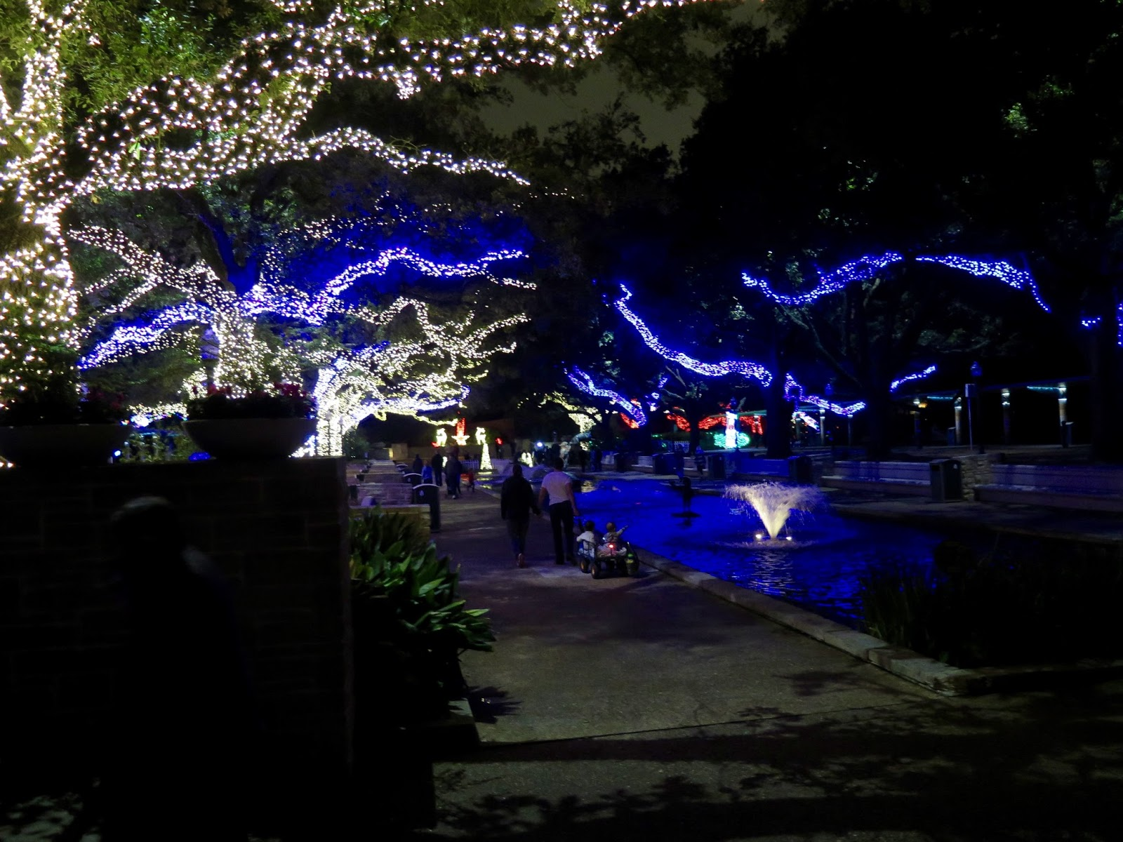 Life By The Pool. . .it's just BETTER!: Zoo Lights at the Houston Zoo