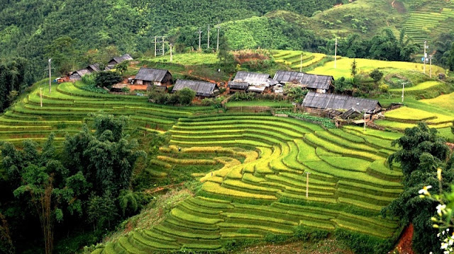 Visit 5 Villages in Sapa Make You Fascinated 5