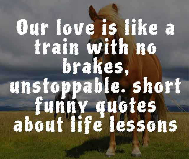 short funny quotes about life lessons