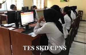 Pemerintah Akan Buat Aturan Baru, Terkait Rendahnya Kelulusan Tes SKD CPNS 2018