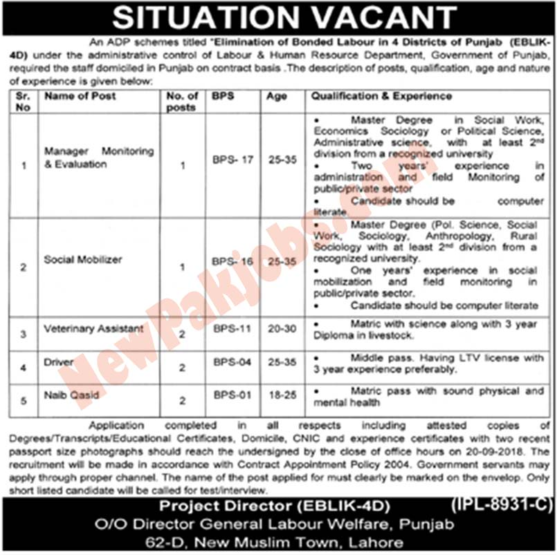 Govt Of Punjab Labour Department Latest Jobs 2018