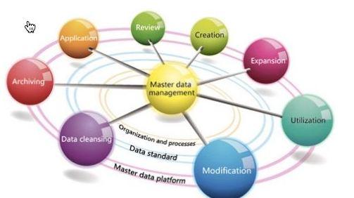 IBM MDM model