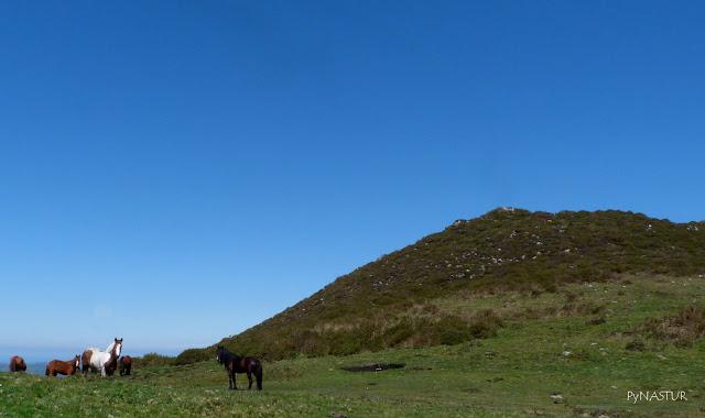 Collao entre El Cerro del Diablo y El Pico Torre