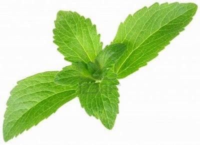 Stevia - El secreto para una vida dulce saludable
