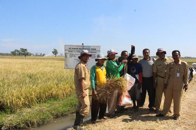 Gandeng Pupuk Kaltim, Tingkatkan Produksi Pertanian
