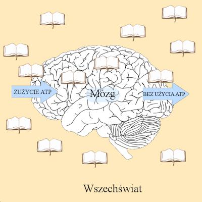 śmieszny obrazek, błony biologiczne, ATP, transport aktywny i bierny, nauka, uczenie się