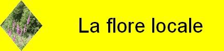 http://broceliandegite.blogspot.com/2009/05/la-flore-locale.html
