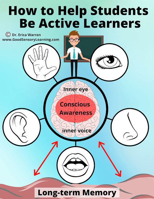 Diagram of the senses and the brain that depicts active learning.