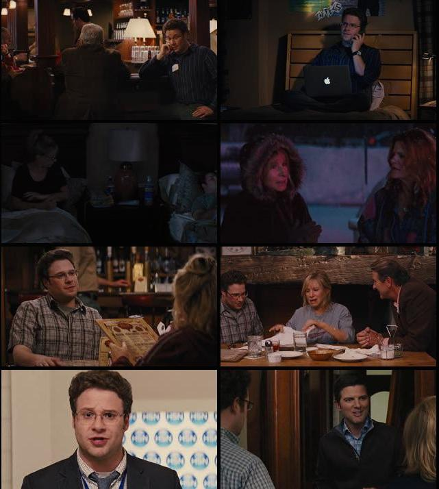 The Guilt Trip 2012 Dual Audio Hindi 720p BluRay