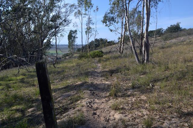 sandy trail