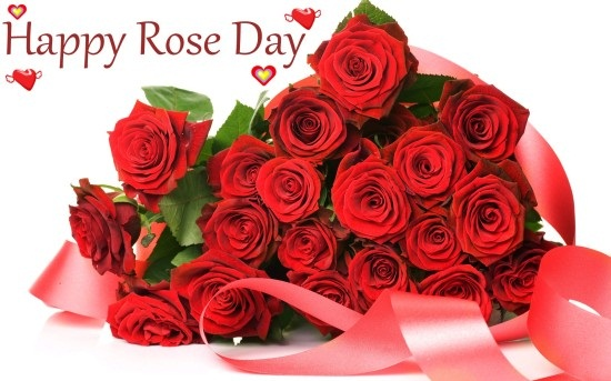 happy rose day wallpapers download, rose day photos download