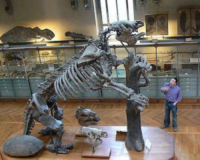 Giant Sloth - Megatherium Ice Age Mammals