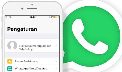 Cara Menyembunyikan Nama Agar Tidak Terlihat di WhatsApp