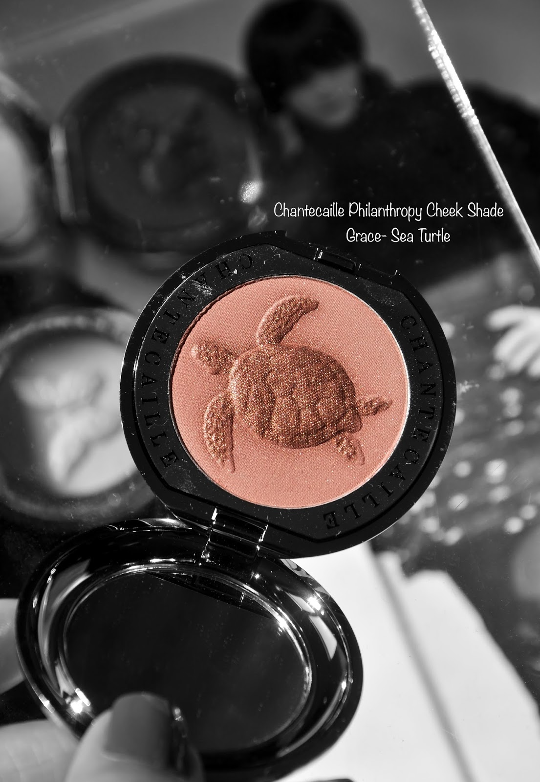 Chantecaille Philanthropy Cheek Shade Grace-Sea Turtle swatches