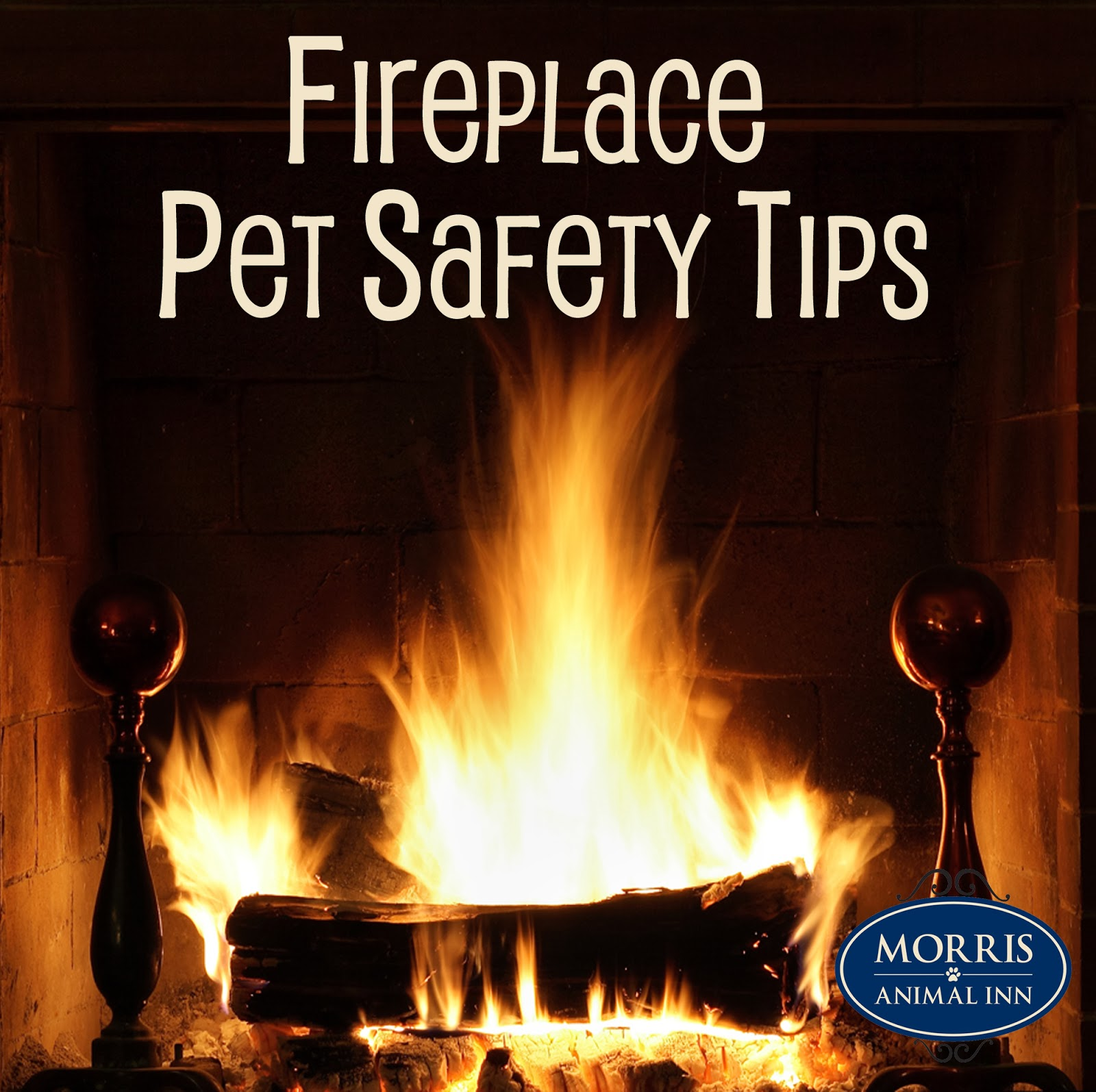 If They Could Talk Pet Safety Around The Fireplace