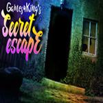 Secret escape walkthrough for Secret escape games