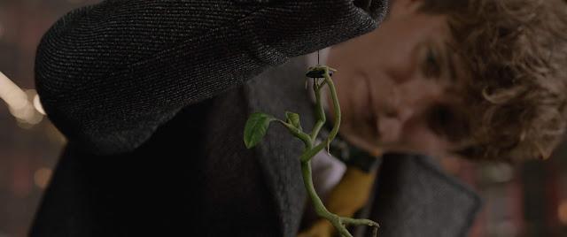 Warner Bros. divulga 10 imagens em alta resolução do trailer final de 'Os Crimes de Grindelwald' | Ordem da Fênix Brasileira