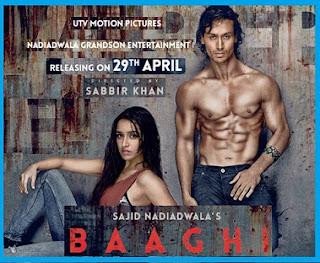 Film Baaghi