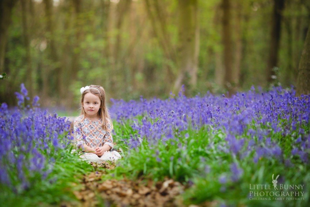 London Bluebell mini photo session