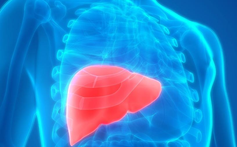 Early Symptoms Of Liver Cancer