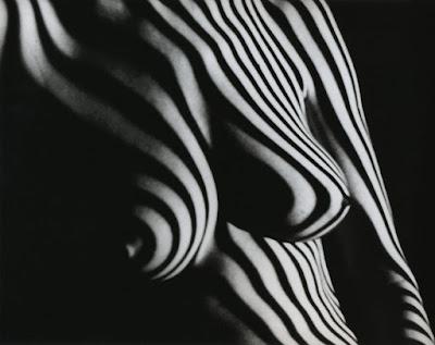 fotografias-femeninas-seleccion-desnudos-artisticos