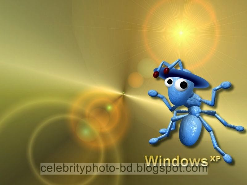 Latest Wallpapers HD Collection of Windows XP For Desktop