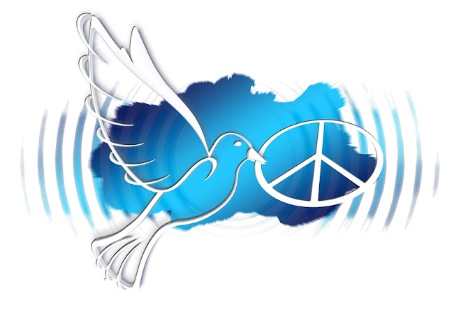 World Peace    Every Day Excited