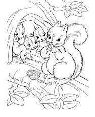 Squirrel Autumn Animals Coloring Pages Online For Print