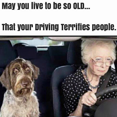 Old People behind the wheel
