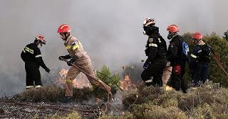 Πυρκαγιά σε δασική περιοχή στη Διάσελλα Ηλείας