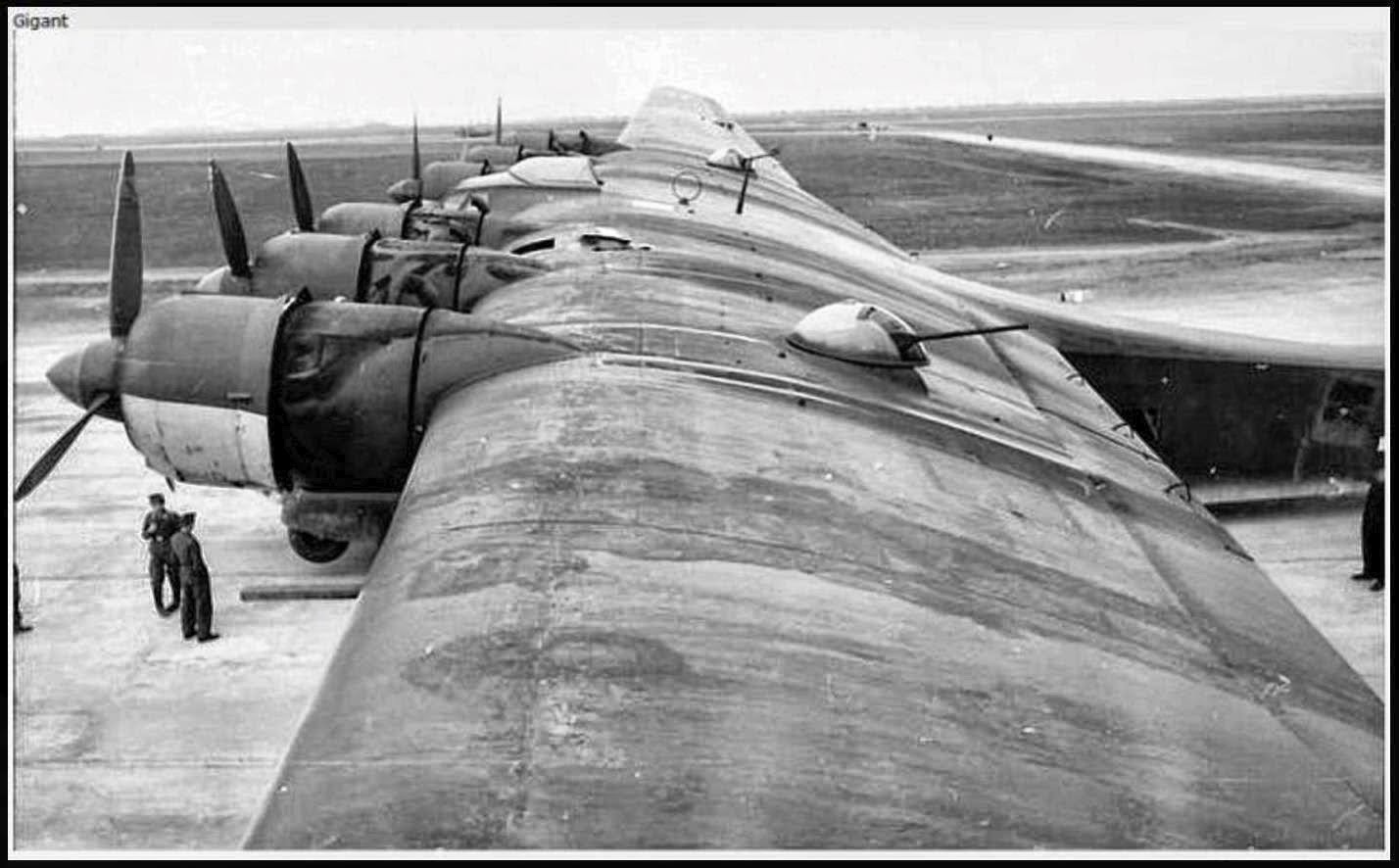 Bayou Renaissance Man: Pictures of the German Air Force in