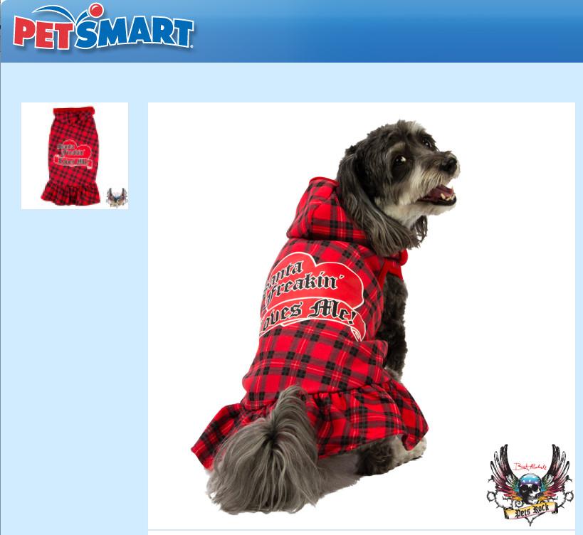 My Favorite Pup Jasmine: #Petsmart dog model- Christmas/ Winter ...