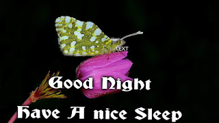 hava a nice sleep
