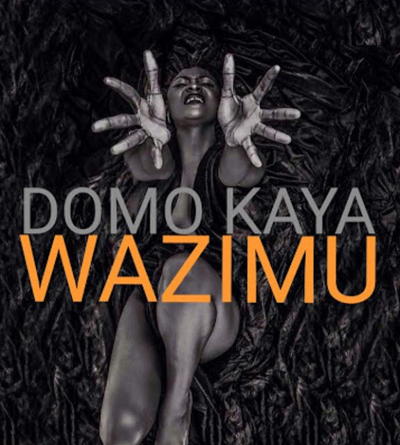 Domo Kaya - Wazimu