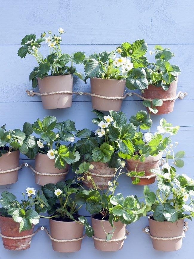 Eco in the City: 12 nifty apartment balcony garden ideas