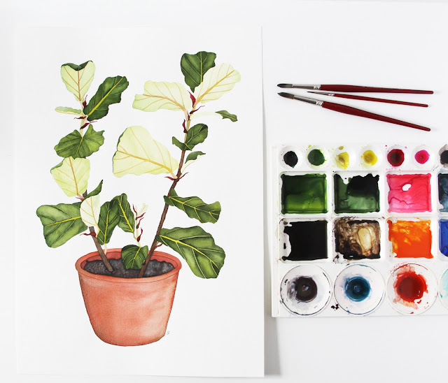 watercolor, houseplant portraits, watercolor painting, fiddle leaf fig, watercolor houseplant, Anne Butera, My Giant Strawberry