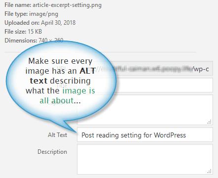 Image alt text setting in WordPress