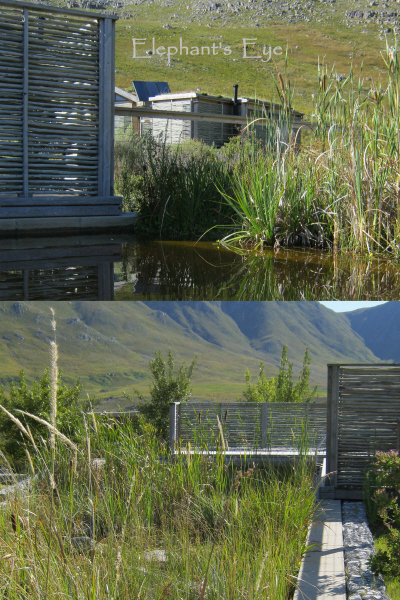 Kogelberg eco-swimming pool (pool above, eco-filter bed below)