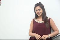 Nikki Galrani in a Brown Shining Sleeveless Gown at Nakshatram music launch ~  Exclusive 018.JPG